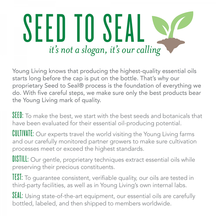 YL Seed to Seal infographic
