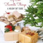 A Few of our Favorite Things – A Holiday Gift Guide