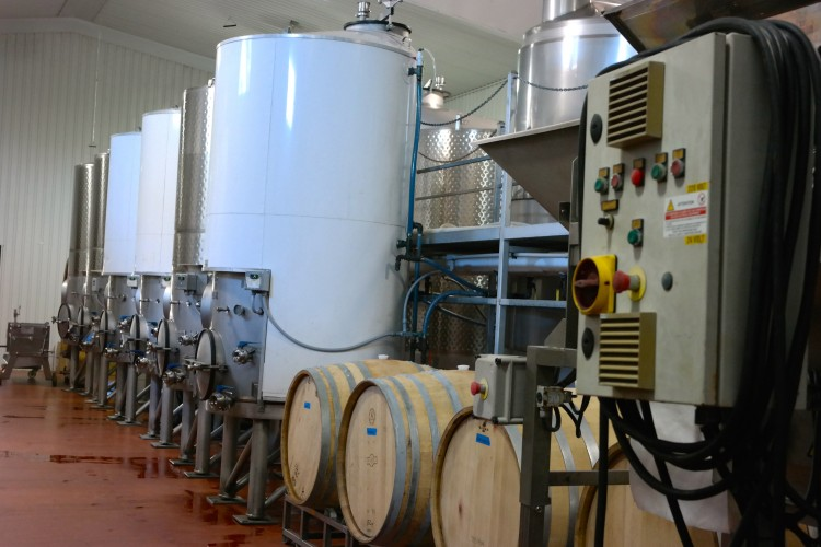 Wine Fermentation Process