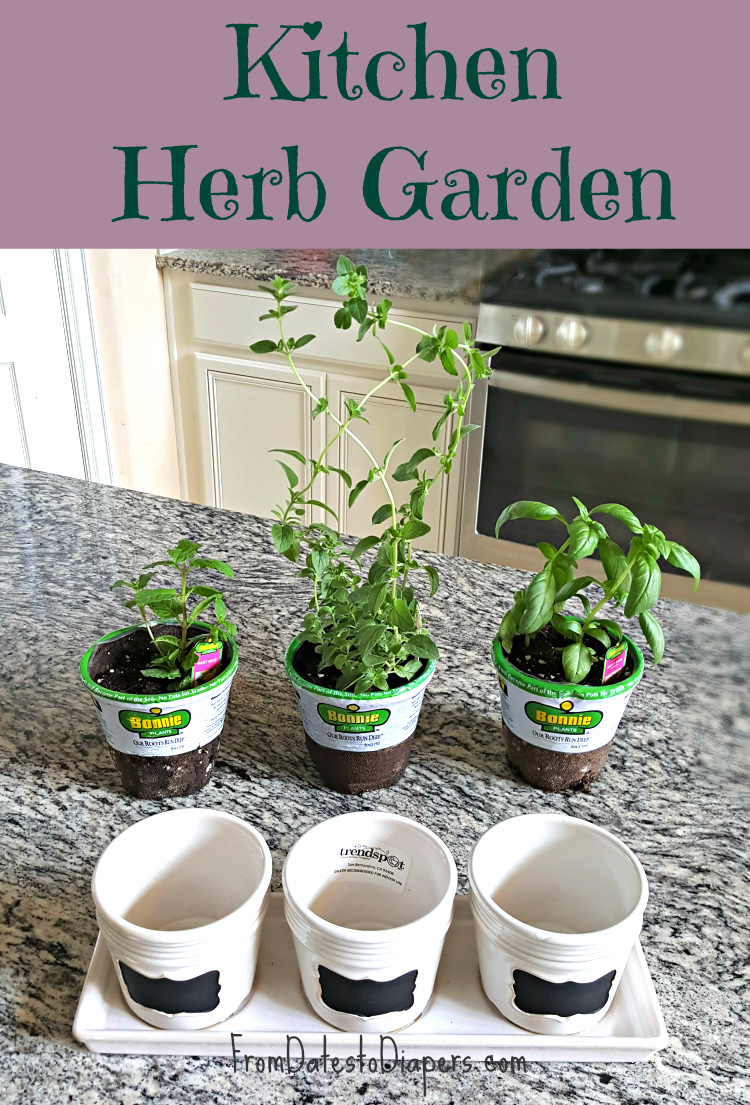 Image Gallery Kitchen Herb Garden