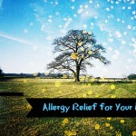 Allergy Relief for Your Eyes