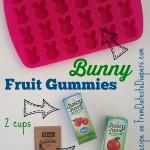 2 Ingredient Juicy Fruit Gummies {recipe}